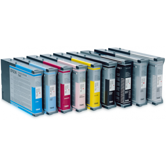 Epson Singlepack Light Black T602700