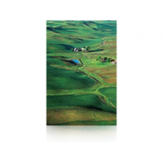Epson Premium Semigloss Photo Paper, 60 Zoll x 30,5 m, 250 g/m²